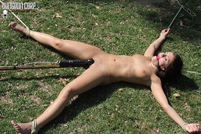 Stripped, Spread and Watched - Adriana Chechik